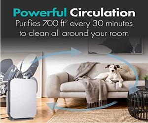 BreatheSmart FLEX Air Purifier
