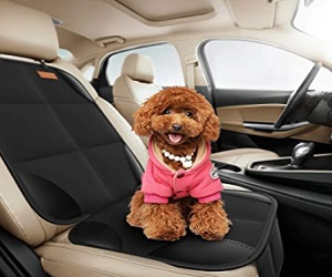 Car Seat Protector For Baby And Pet
