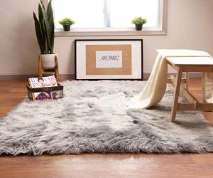 Fluffy Area Rug 3 x 5