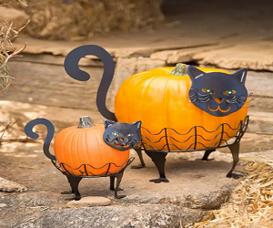 Halloween Cat Pumpkin Holders with Green LED Eyes