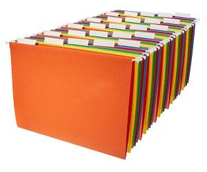 Hanging Organizer File Folders