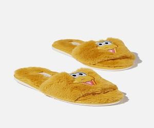 Novelty Slide Slipper