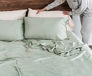 Eucalyptus Silk Pillowcase Set