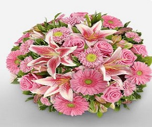 Pink Asters Bouquet