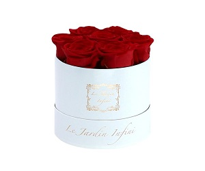 7 Red Preserved Roses