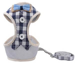 Puppy Padded Mesh Front Vest with Leash,